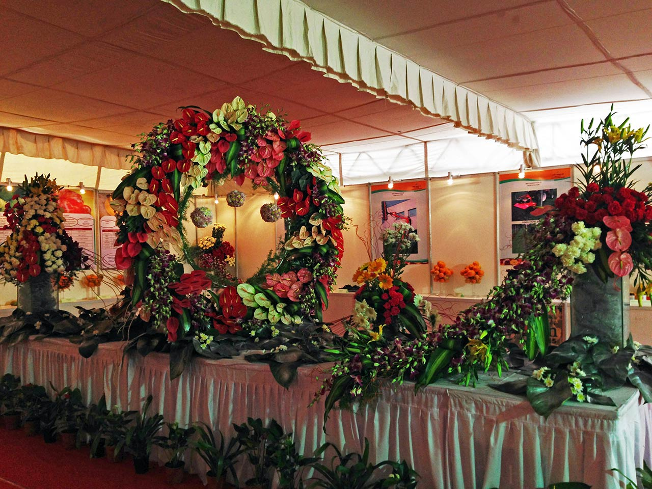 National Horticulture Board of India Exhibition