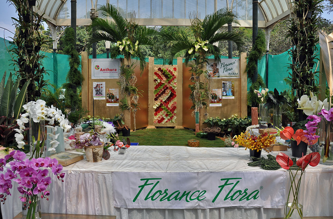 Flower Arrangement Displays at Lalbagh Bangalore